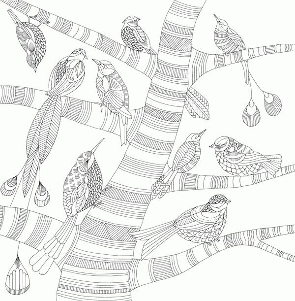 Книга Дивосвіт, Міллі Маротта | Bukio